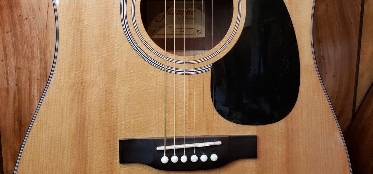 Takamine – Jasmine Series S33 Dreadnought Acoustic Guitar